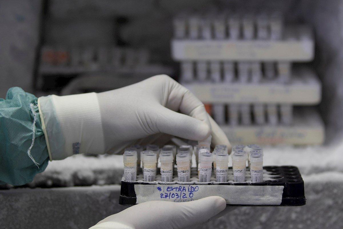 Científicos aseguran que mutación del coronavirus en Venezuela se transmite más rápido