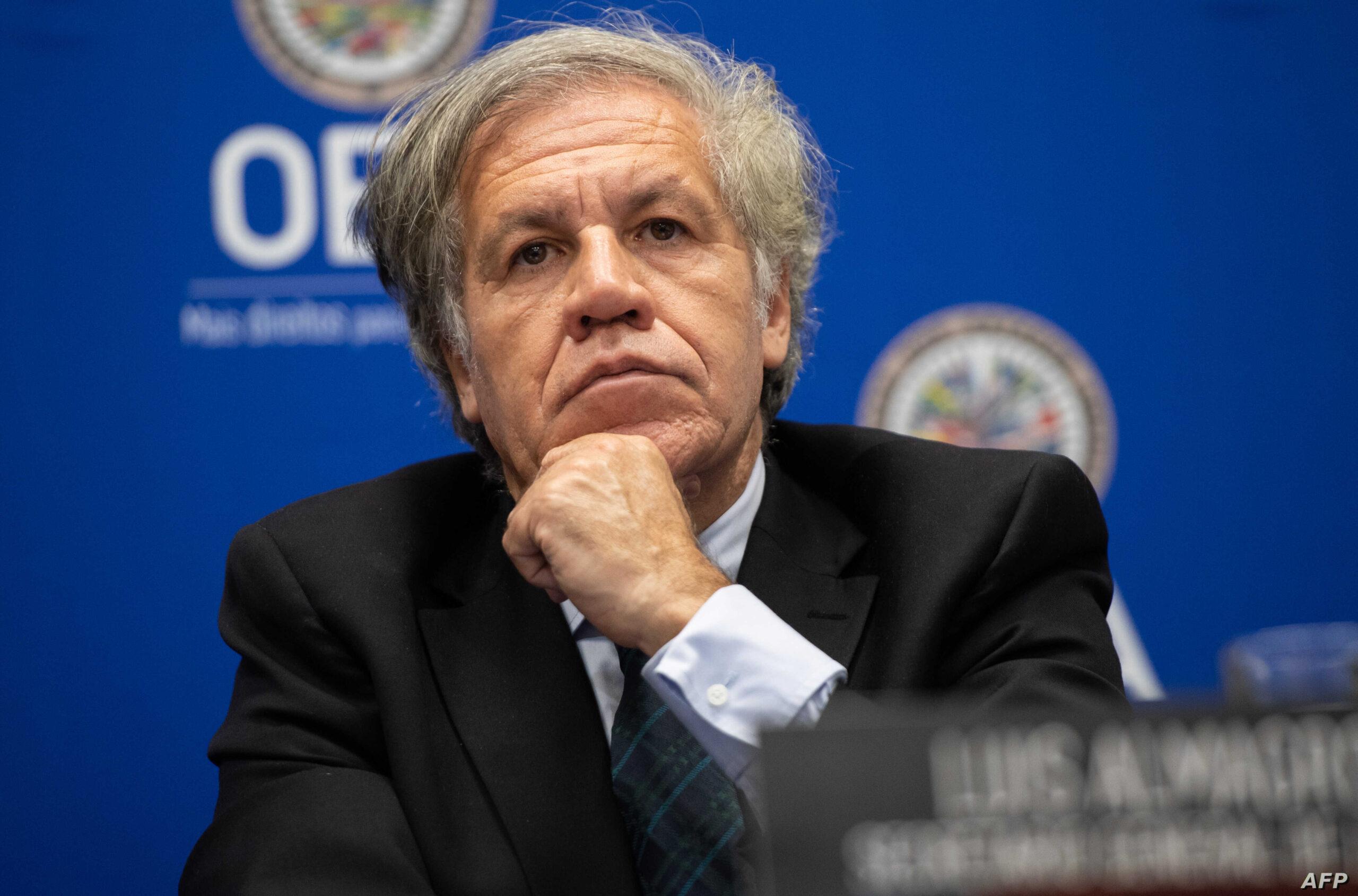 La OEA respalda el Acuerdo de Salvación Nacional ideado por Juan Guaidó